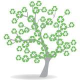 Ecologie 免版税库存图片