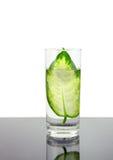 Ecologie - groen blad in glas water. Stock Foto's