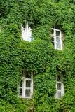 Ecologie-vriendschappelijk huis Stock Fotografie