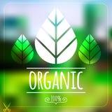Ecologieetiket op vaag groen landschap Royalty-vrije Stock Foto