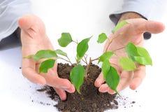 Ecologisch concept Royalty-vrije Stock Afbeeldingen