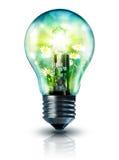 Ecologisch idee royalty-vrije stock afbeeldingen