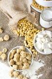 Ecologisch texturized sojavlees met sojabonen en tofu op plattelander Stock Fotografie