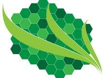 Ecologische achtergrond Royalty-vrije Stock Afbeelding