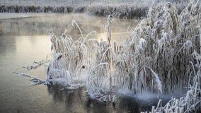 ecologische crisisfoto Een deel van het meer is behandeld met een dunne laag van ijs, en een deel is niet bevroren en stijgt wege royalty-vrije stock afbeeldingen