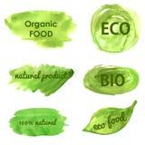 Ecologische en aardbanners ga groen Stock Afbeelding