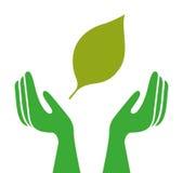 Ecologische handen die geïsoleerd pictogramontwerp beschermen Stock Foto's