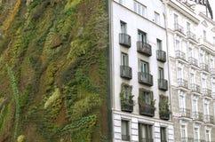 Ecologische stedelijke bouw Muur van installaties royalty-vrije stock afbeeldingen