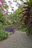 Ecologische tuin Stock Afbeeldingen
