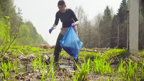 The ecologist going to the place of research. The woman ecologist collecting garbage in a garbage bag in the forest stock video