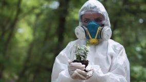 Ecologist holding plant Royalty Free Stock Image