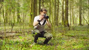 The ecologist making photos in the forest. The woman ecologist making photos of the plants in the forest stock footage