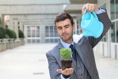 Ecologist taking care of a plant Stock Images