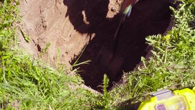 Ecologista de la mujer en el prado que cava una raja del suelo metrajes