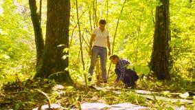 Ecologista dos en el bosque almacen de metraje de vídeo