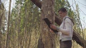 Ecologista en el árbol de medición del daño del bosque almacen de metraje de vídeo