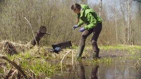 Ecologista en la tala del bosque que consigue muestras almacen de metraje de vídeo