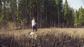 Ecologista en la tala del bosque que mide pequeños árboles almacen de metraje de vídeo