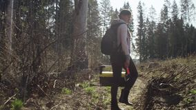 Ecologista en la tala del bosque almacen de metraje de vídeo