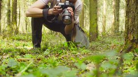 A ecologista que faz fotos na floresta fotografia de stock royalty free