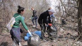 Ecologistas amistosos que limpian la basura en el parque Timelapse almacen de metraje de vídeo