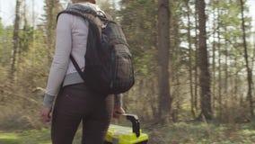 Ecologo sull'abbattimento della foresta video d archivio