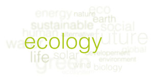 Ecology background - 3d words cloud on white stock illustration