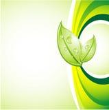 Ecology background Stock Photos
