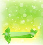 Ecology background with green leaves Royalty Free Stock Photography