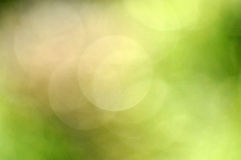 Ecology bokeh background Royalty Free Stock Images