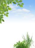 Ecology Border Stock Photo