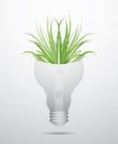 Ecology bulb Royalty Free Stock Photos