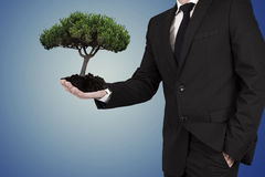 Ecology. Business man with tree in hands, ecology concept Stock Photo