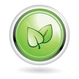 Ecology button - green leaves Royalty Free Stock Photos