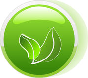 Ecology button icon Stock Image
