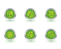 Ecology buttons. Set of six ecology buttons Stock Photo