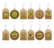 Ecology Cardboard Tags Stock Photography