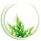 Ecology circle. Conceptual icon,  illustration Royalty Free Stock Photography