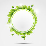 Ecology circle with leaves Stock Images