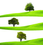 Ecology concept Royalty Free Stock Image