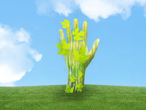 Ecology concept. Green hand out of land as a tree with leaf Royalty Free Stock Photo