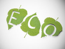 Free Ecology Concept Royalty Free Stock Photos - 31024778