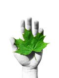 Ecology concept. Green maple leaf in a hand Royalty Free Stock Photos