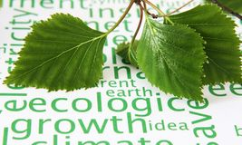Ecology concept Royalty Free Stock Images