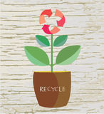 Ecology concept with flower and recycle sign Stock Photography