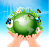 Ecology concept.Green Globe and Grass with Flowers. Vector illustration royalty free illustration