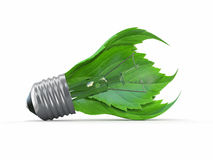 Ecology concept. Light bulb with leaf Royalty Free Stock Photography