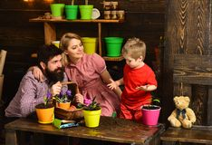 Ecology concept. Little child help mother and father planting flower to new pot, ecology. Ecology and environment. Plant. Ecology. Go eco royalty free stock images