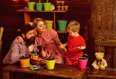 Ecology concept. Little child help mother and father planting flower to new pot, ecology. Ecology and environment. Plant. Ecology. Go eco stock photography