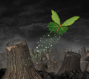 Ecology concept. And new beginning symbol as a group of green leaves shaped as a butterfly flying up away from a dead forest of chopped trees as an icon for Stock Images